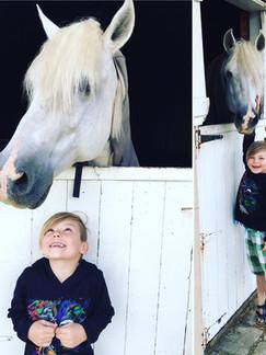 Steele and horse.jpg