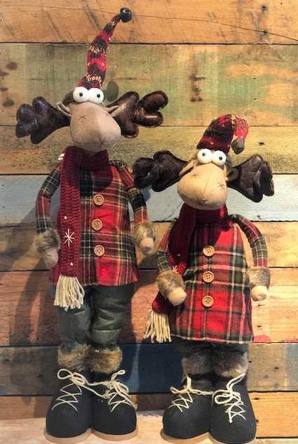 Moose in Plaid Outfit