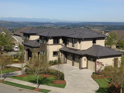 Terrene Homes- Issaquah Highlands