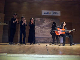 2013年 セビージャのCajasol劇場にて行われた国際ギターフェスティバルにてスペシャルゲストとして出演。