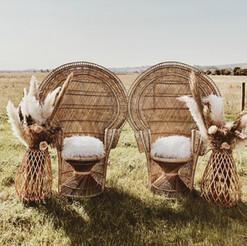peacockchairs.JPG