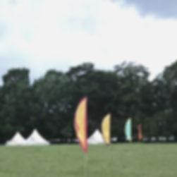 Festivalflags_edited.jpg
