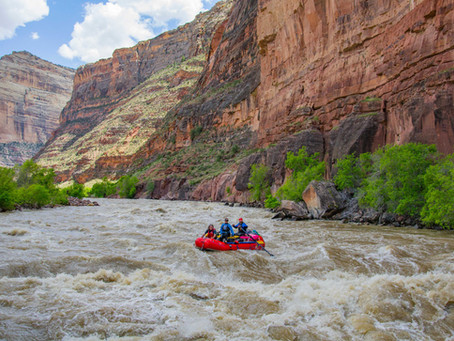 How Our 8 Colorado Rivers Rank in Water Quality from Best to Worst
