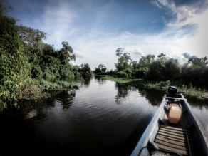 Everything you need to know about the Bolivian Amazon