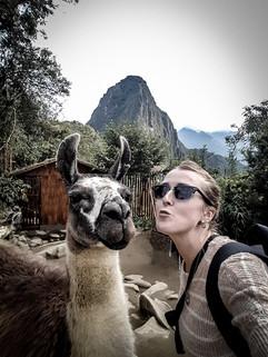 Llama love, Machu Picchu, Peru