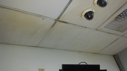 jasons pics from galaxy 4 1354