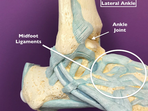 Mid-Foot Madness: Expectations on PJ Washington's Foot Sprain