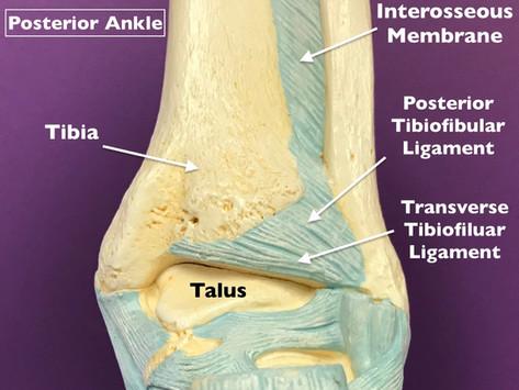 Saquon Barkley - High Ankle Sprain