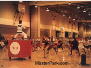 World Top Quality Martial Arts Training Private/Group by Master Park