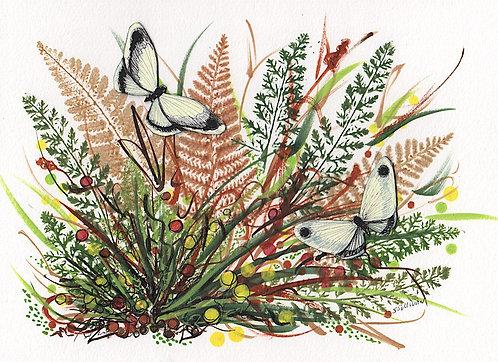 Fall - Two Butterflies