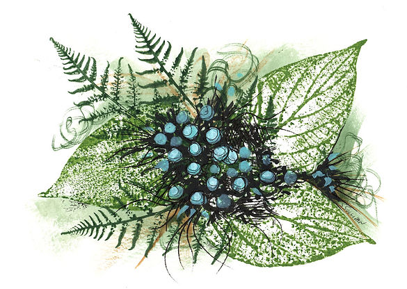 Art Card image of green leaves ferns and blue berries