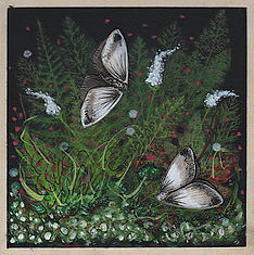 Small square painting of a dark woodland scene featuring ferns, moss, and moths.