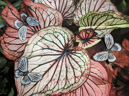 Digital image of red leaves with collaged paper butterflies