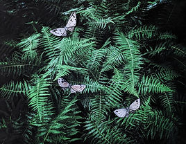 Digital Photo of ferns with collage paper moths