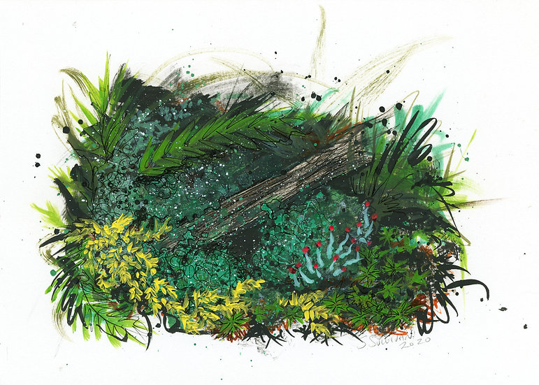Forest Observations 6 - Small Work