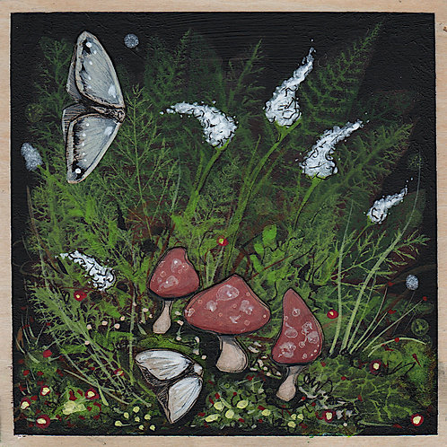 Woodland - Forest Floor (Two moths and mushrooms)