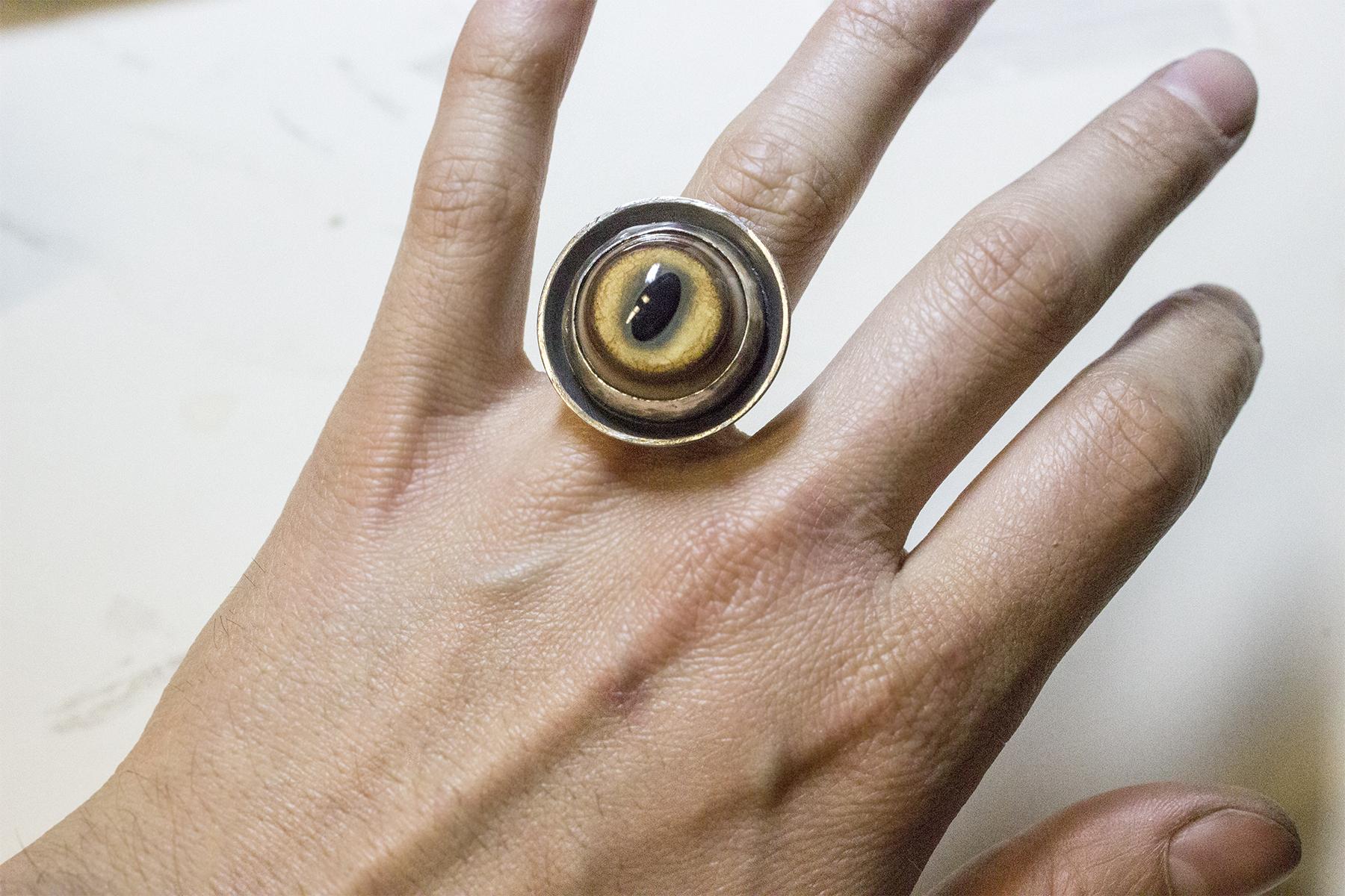 taxidermy coyete ring detail3