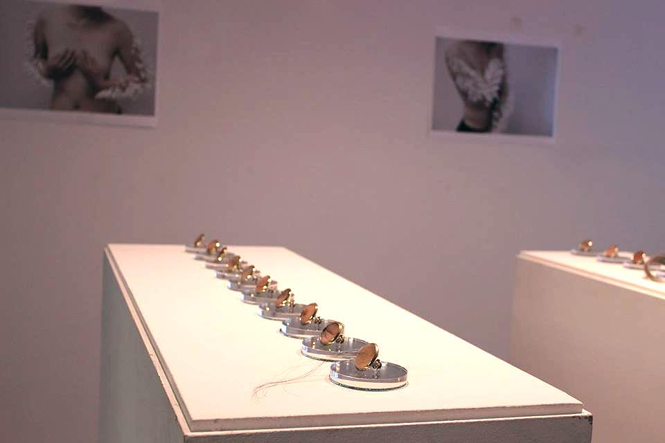 Gallery Shot:  Marilyn Koch (brooches) + Ssu-Ya (images)
