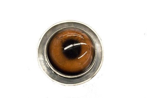 Taxidermy Glass Eye Brooch (Elephant)