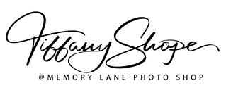 Memory Lane Photo Shop Logo.png