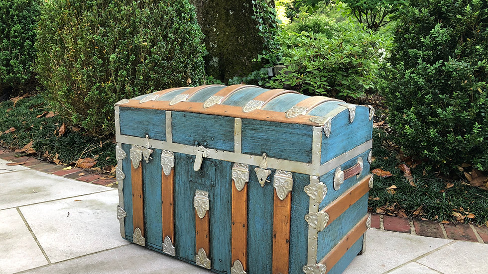 Blue and Tan Trunk