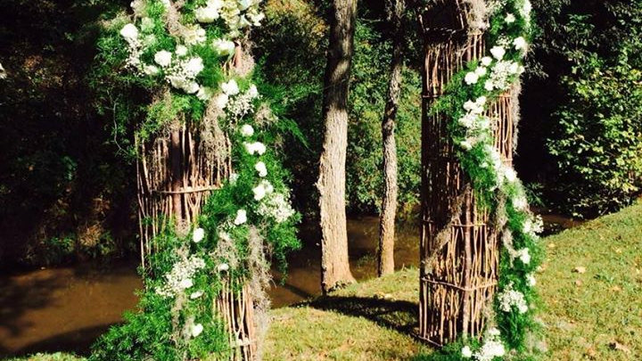 Curly Willow Arbor