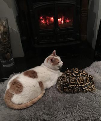 is it me, or is it warm in here...?