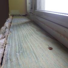 Wood Sill Interior