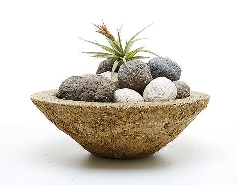 Medium cactus cone w/ Pozzola Balls