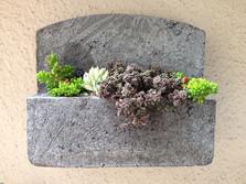 Pozzola Vertical Garden