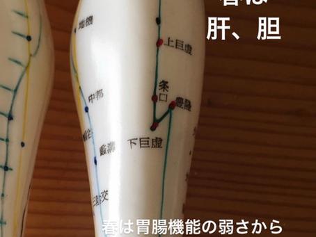 経絡ヨガ ホリスティックヘルスケア研究所