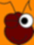 fourmi clin d'oeil transp.png