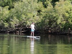 River - Paddle Board.JPG