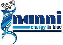 Nanni Logo 2012 1.jpg