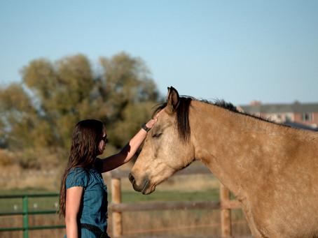 A Navicular Horse's Purpose
