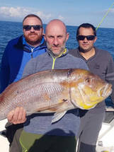 Isula Fishing Dentex Gibbosus