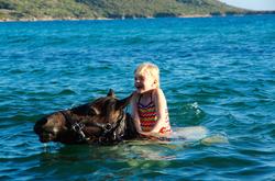 Fior di Lezza baignade cheval corse