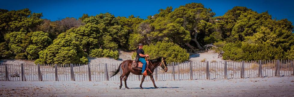 """alt=""""ferme equestre fiordilezza cheval corse serradiferro cupabia baignade plage"""""""