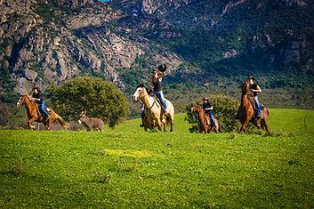 "img src=""sportive.jpg"" alt=""balade rando plage maquis corse cheval galop cavallu horse corsica"""