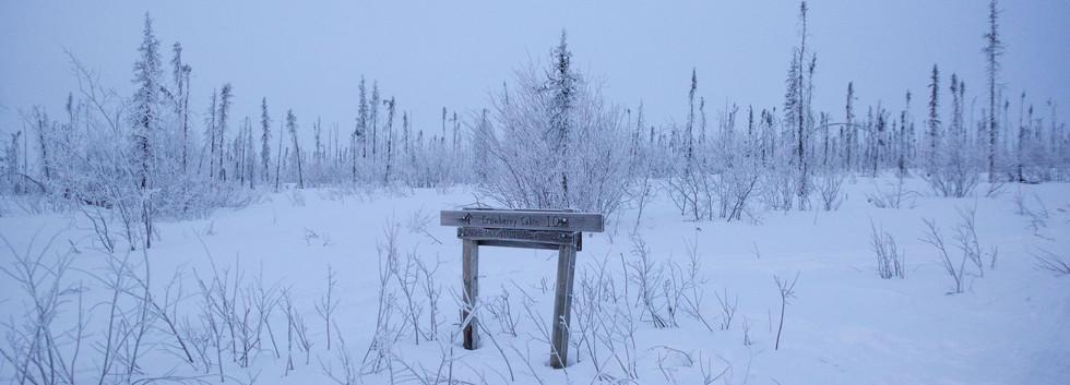 A White Mountains NRA sign.