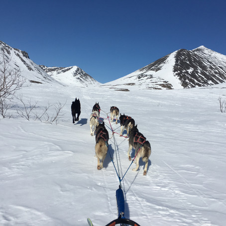TRIP FEATURE: Nome Creek Basecamp Tour
