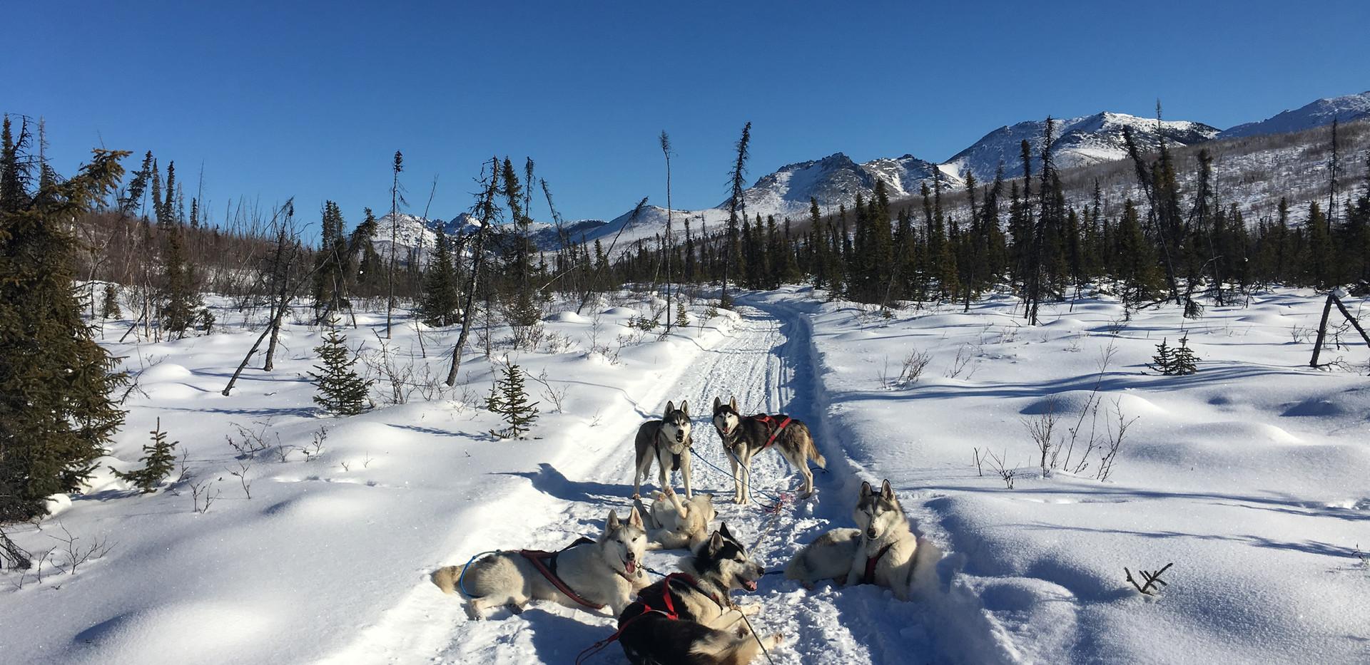 Lunch break just past Wolf Run Cabin.