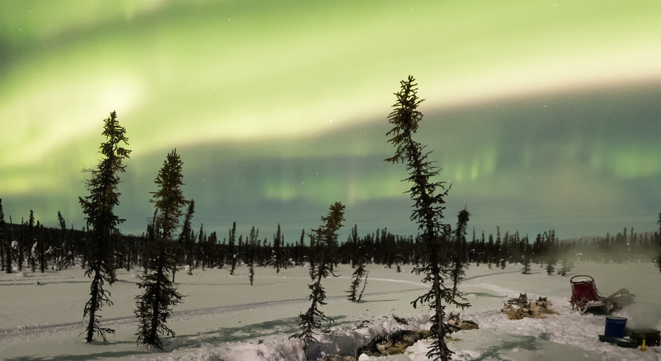 Northern lights in the Chatanika River Valley