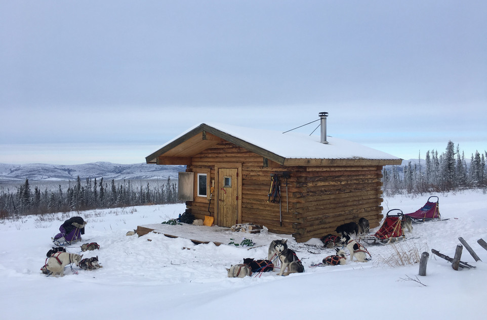 Crowberry Cabin