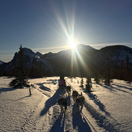Planning a multi-day dog sledding trip in Alaska?
