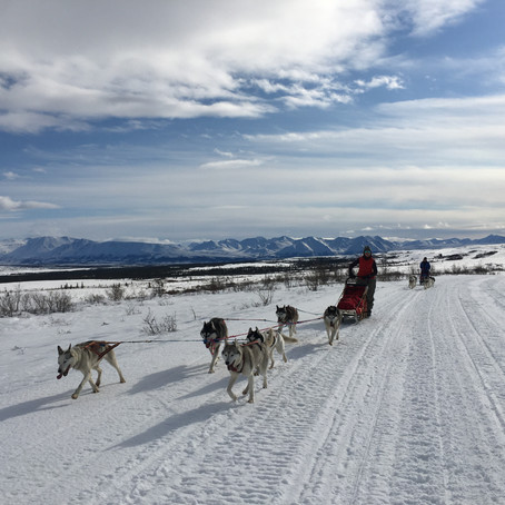 2020 Denali Dream Expedition