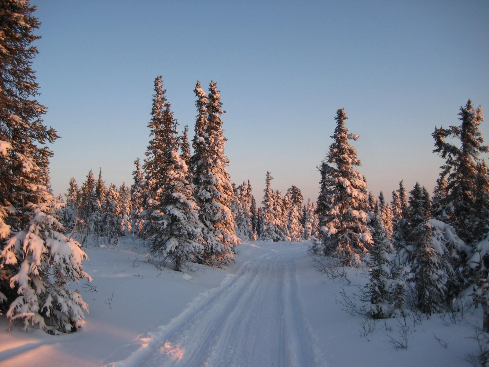 alpenglow trail