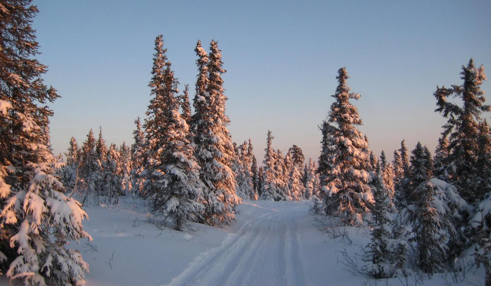 alpenglow trail.jpg