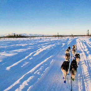 Harness Your Power: Susitna River Women's Mushing Retreat
