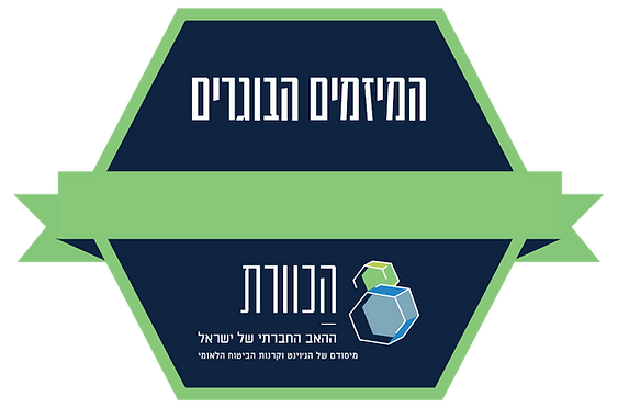 לוגו מיזמים.png